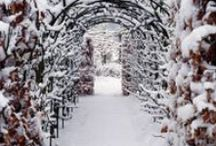 Winter Gardens / Beautiful Gardens in Winter