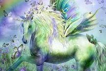 Unicorn beauty / Unicorn pictures - Eenhoorns