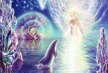 Dolphin Dreams / Dolfijnen - Dolphins