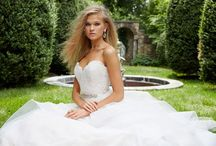 Alvina Valenta / Alvina Valenta gowns featured in our store.  Make an appointment to try one on!