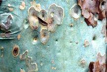 Crush: Nature's Textures / Inspiring natural textures made by Mother Nature