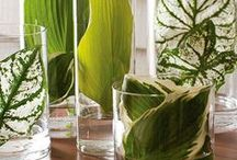 DIY: Nature Displays To-Do / Ways I want to display Nature in my home