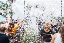 Just Married! / Weddings at Villa de Mar and Marbella Club