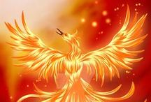 Rising from the Ashes / ~ The Mighty Phoenix ~