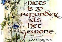 Ode aan Toon (Hermans) / Antoine Gerard Theodore (Toon) Hermans (Sittard, 17 december 1916 — Nieuwegein, 22 april 2000) was een Nederlandse cabaretier, zanger, kunstschilder en dichter. Met Wim Kan en Wim Sonneveld behoorde hij tot de grote drie van het cabaret van na de Tweede Wereldoorlog.