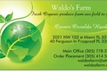Waldo's Farm / Fruits and Vegeables