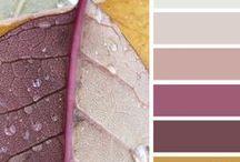 Abbinare i colori / Non sai come abbinare i colore nel tuo bagno? La natura ci dà una mano.
