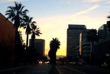 Local San Jose / Explore San Jose!  / by San Jose Marriott Hotel