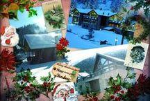 Christmas spirit - fenbauhome