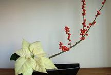 Japan Ikebana / by Irene Nazak