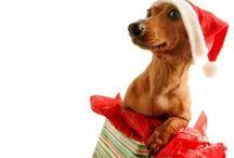Boże Narodzenie/Christmas / Boże Narodzenie/Christmas