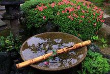 Tuin / Tuininrichting Japans