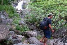 Camping & Hiking / Camping, Hiking, Exploring, Mountains, Nature, Outdoors, Adventure,