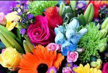 Flowers Belfast