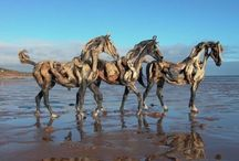 Driftwood Sculptures / by Linda Jacobs