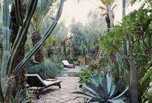 Gärten weltweit