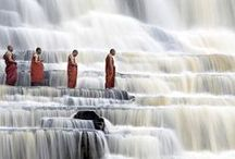 Zen Yoga / by Christy Cramer-Barry