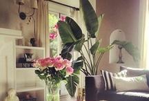 ❤❤Ma maison chérie❤❤ / home sweet home