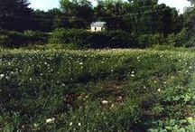Picturesque Landscapes - Medusa, New York / Scenes around our picturesque hamlet