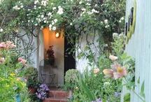 Cottage Style / by Jane Fazzari