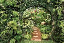 Gardens / by Emily Churchwell