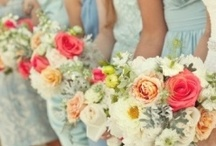 Wedding / wedding photos and ideas  / by Caroline Ott