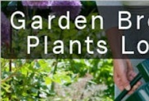 gardening - tips and how-to's