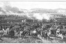 Articles / Articles related to the Mexican War. / by Palo Alto Battlefield NHP