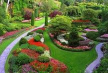 @Garden