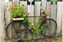 Gardening / Ideas for my garden and for container gardening.  Succulents, vegetables and flowers.  I love them all!