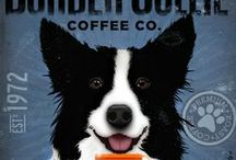 Dog Lover / Dog people are the best people.  Border Collies are my current dog of choice.  So smart and so beautiful!