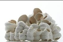 shells and cocoons / shells, cocoons, ceramic, jewelry, art, vase, bawls