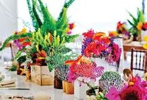 Tablescapes / by Paula