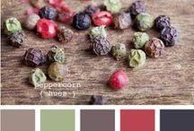 Color / farba