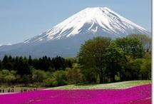 Around the world - Japan / by S.Carol Eaton