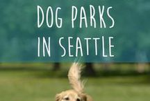 Pet Friendly Towns / Pet Friendly Towns across the USA and around the world. Perfect for planning your next pet friendly vacation! Travel tips, itineraries, and more!