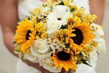 Perfect Wedding / Ideas for my fairytale wedding...