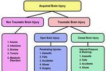 Brain Injury 101: The Basics
