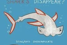 Learning Activities: Sharks