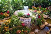 hage \ garden