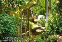 Gartenzauber