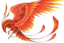 Phoenix / Feniks, tatoo
