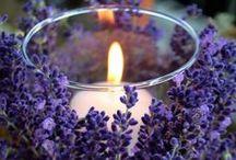 CT - Levendula / Elegáns, illatos, ízes, egészséges, nyugtató, élénk, vágyfokozó - a levendula örök szerelem.