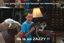Big Bang Theory / Funny moments from The Big Bang Theory