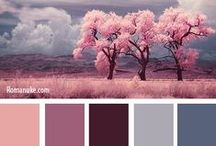 Summer Type Colours
