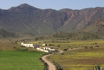 Cabo de Gata - Almeria / Choose Almeria for natural parks: Cabo de Gata - an unspoilt coastal destination surrounded by nature, rich in culture and local history, perfect for outdoor activities... http://choose-almeria.com/cabo-de-gata.php