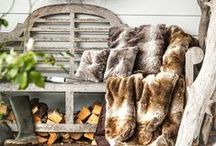 Wonderful fall / warm and cool tones, cozy atmosphere