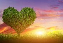♥ Alles is liefde ♥ / Ik hou van jou.