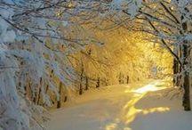 Snow / La neige / Paysages et autres...