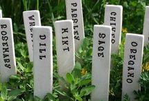 Маркеры для сада / Garden markers